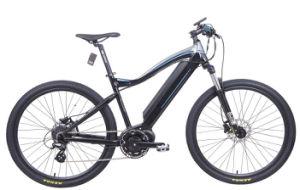 Electric Mountain Bike with 250W MID-Motor