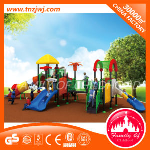 Customized Amusement Park Outdoor Playground Equipment 2016 pictures & photos