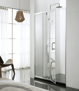 Swing Door Shower Screen with Side Panel Steam Shower Glass Door Sanitaryware Simple Room pictures & photos