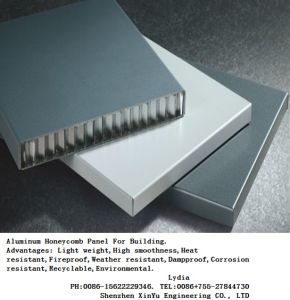 Aluminum/Aluminium Honeycomb Panel for Curtain Walls