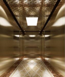 Elevator Lift Passenger Villa Cabin pictures & photos