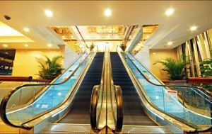 Commercial Building Escalator with Small Machine Room pictures & photos