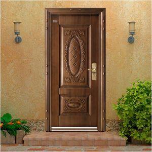 Artificial Cooper Steel Door pictures & photos