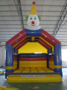 Brend New Inflatable Bouncer with Competitive Price (A123) pictures & photos