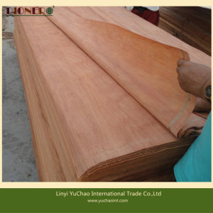 4′x8′x0.3mm Natural Plb Veneers for Indian Market pictures & photos