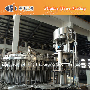 Plastic Bottle Beer Filling Plant pictures & photos