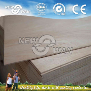 Door Size Plywood for Door Use, Veneer Faced Plywood pictures & photos