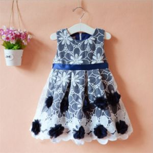 Kd1127 Organza Dress with Embroidery Fleece for Kids Girls pictures & photos