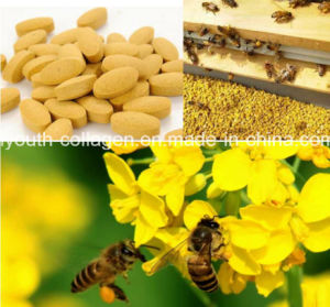 100% Nature Rape Bee Pollen Chewable,Gift of Nature,Pure Natural Nutrition Treasure,Pure Natural Drug Treasure,Prostate Disease Killer,Prolong Life,Health Food pictures & photos