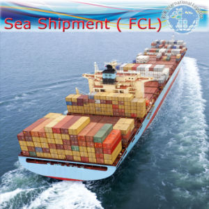 Logistics Freight Forwarder Service, International FCL Shipping (20′′40′′) pictures & photos