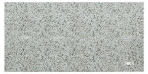 Porcelain Ceramic Granite Stone Exterior Wall Tile (300X600mm)