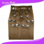 Cheap and Beauty 100% Human Hair Clip Extensions pictures & photos