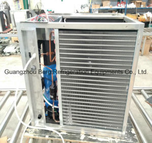 Stainless Steel Ice Tube Maker (ASPERA Compressor) pictures & photos