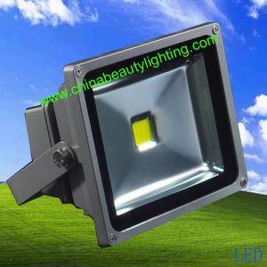 100W Epistar LED Chip Flood Light LED Light pictures & photos