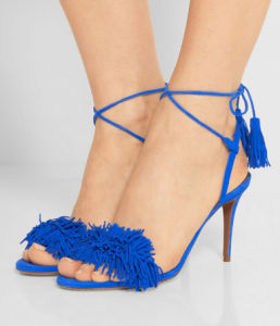 New Fashion Ladies High Heel Shoes with Tassels (HS07-24) pictures & photos