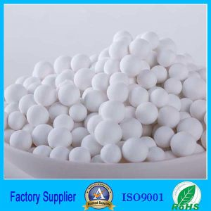 H5563 Activated Alumina (absorbent, catalyst, desiccant)