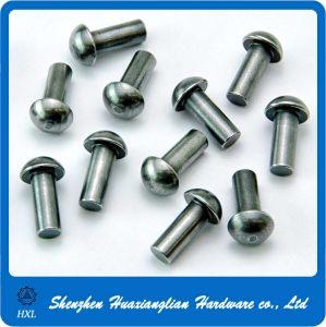 Half Round Steel Brass Rivet Pin pictures & photos