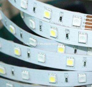 24 Volt Flexible Lighting RGB Color LED Strip pictures & photos