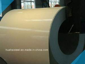Prepainted Hot Dipped Galvanized Steel in Coil /Sheet pictures & photos