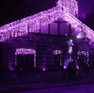 RGB LED Curtain Light Net Holiday Decoration pictures & photos