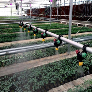 Water Saving Irrigation System for Greenhouse Growing pictures & photos