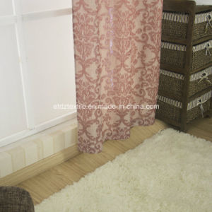 First Class Ttypical Polyester Jacquard High Grade Curtain Fabric pictures & photos