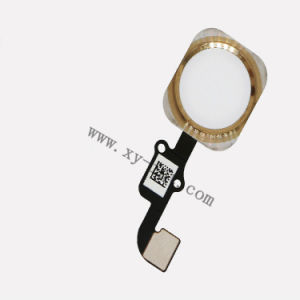 Original Home Button with Flex Cable for iPhone 6s Plus Phone Accessories pictures & photos