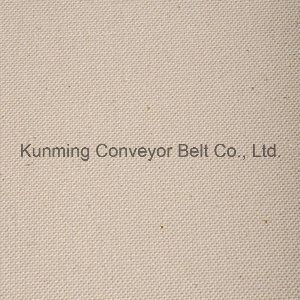 Conveyor Belt for Food and Light Industrial pictures & photos
