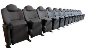 Multiplex Theater Cinema Seating pictures & photos