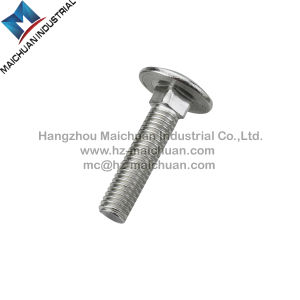 M10 Carriage Bolt pictures & photos