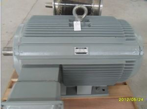 High Efficiency Permanent Magnet Generator/Alternator pictures & photos
