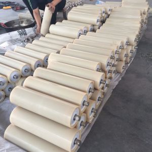 Tfp Nylon Carrying Idler with Heat Resistant and Heavy Loading Properties pictures & photos