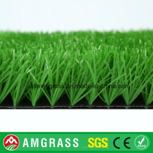 50 mm Outdoor Synthetic Turf for Football pictures & photos