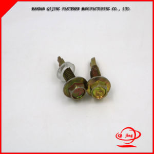 Brass Tin Plated Self Drilling Roofling Screws pictures & photos