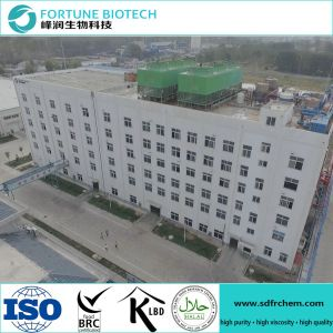 Fortune Paper Making Grade CMC Sodium Carboxymethyl Cellulose pictures & photos