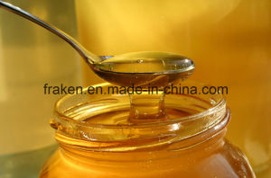 High Quality Honey Powder & Bee Honey pictures & photos