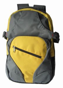 Classic and Fashion Sport Backpack Small Order Accepted pictures & photos