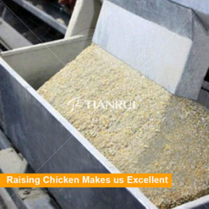 Chicken Cage System Automatic Chicken Feeder for Poultry pictures & photos