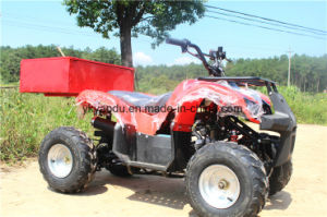 2016 Newest 150cc/200cc/250cc 4 Stroke UTV Farm ATV pictures & photos