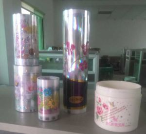 Heat Transfer Printing Film for Plastic (PP PS PVC PE ABS PS)