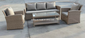 Garden Outdoor Model Wicker Rattan Furniture pictures & photos