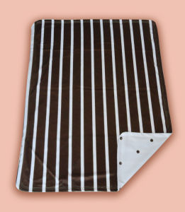 Baby Printed Polyester Mink Blanket Stripe with DOT Pritning (HR01BB026) pictures & photos