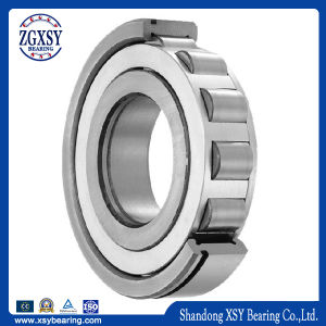 Nu Series Single-Row Cylindrical Roller Bearing pictures & photos