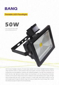 IR+ Floodlight/Bq-Fl290-50W IR+