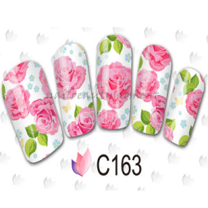 Nail Art Water Decals Transfer Sticker Manicure Beauty Accessories (NPP11)