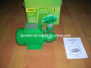 Qb60 Vortex Water Pump 0.5HP Garden Pump Electric pictures & photos