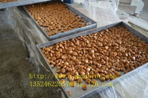 Automatic Toffee Candy Producessing Line pictures & photos