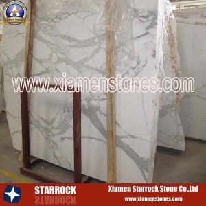 Imported Marble Slab-Calacata White