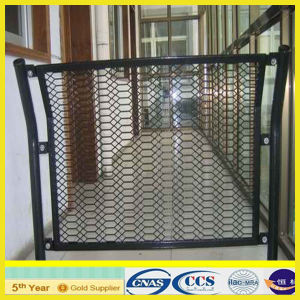 Galvanized Expanded Metal Mesh pictures & photos