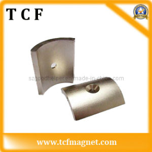 Rare Earth Permanent NdFeB Magnet for Motor (moto) with SGS